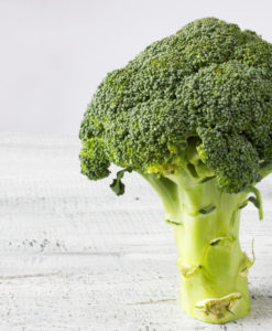 Fresh Green Broccoli On White Background